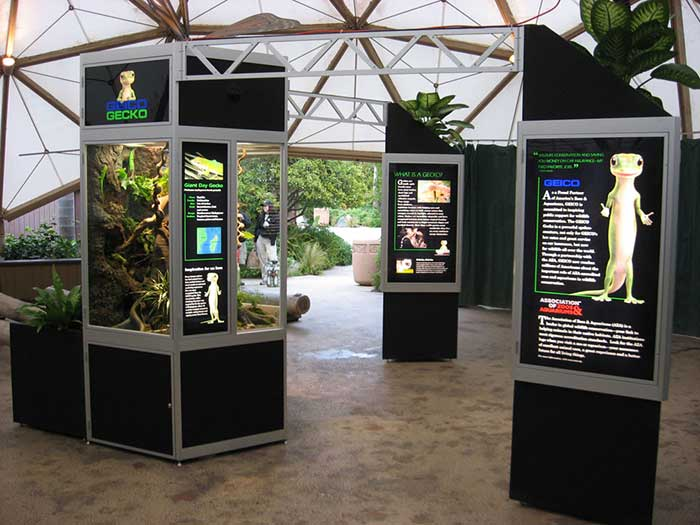 Gecko Exhibit
